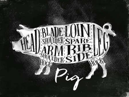 rib: Poster pig pork cutting scheme lettering head, blade shoulder, arm shoulder, loin, spare rib, side, hock, leg in vintage style drawing with chalk on chalkboard background