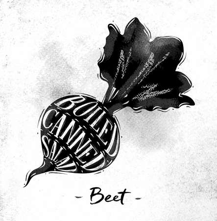 plant stand: Poster beet cutting scheme lettering boiled, canned, salad in vintage style drawing on dirty paper background Illustration