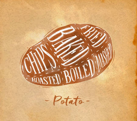 baked potato: Poster potato cutting scheme lettering chips, baked, fried, roasted, boiled in retro style drawing on craft paper background Illustration