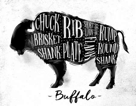 Poster buffalo cutting scheme lettering chuck, brisket, shank, rib, plate, flank, sirloin, shortloin, rump, round, shank in vintage style drawing on dirty paper background Illustration