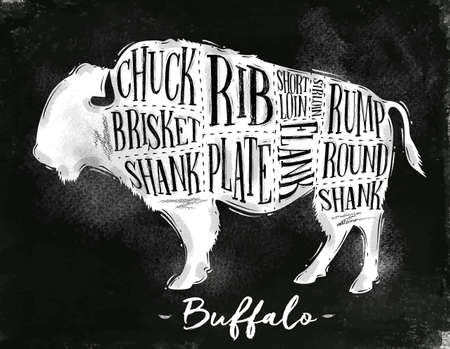 Poster buffalo cutting scheme lettering chuck, brisket, shank, rib, plate, flank, sirloin, shortloin, rump, round, shank in vintage style drawing with chalk on chalkboard background Illustration