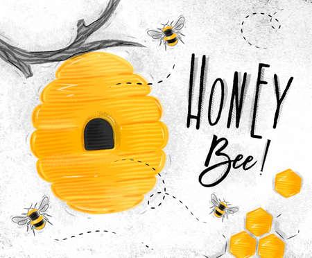 Poster geïllustreerde bijenkorf, honingraten belettering honingbij puttend uit vuile achtergrond papier Stockfoto - 85193526