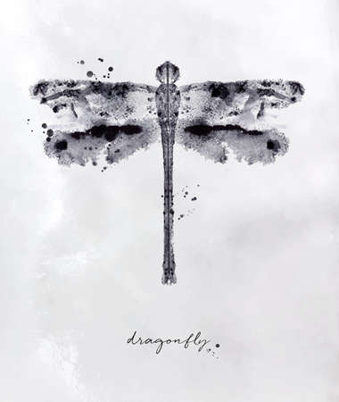 Monotype dragonfly drawing with black and white on paper background Stock Illustratie