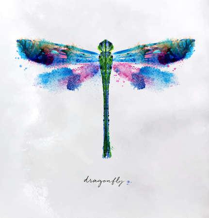 Monotype vivido colorato disegno libellula con colori diversi su carta.