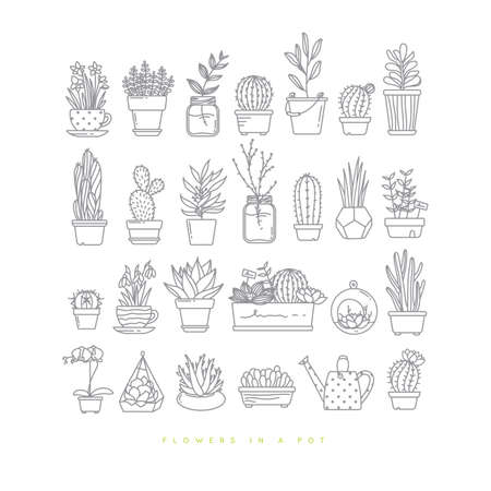 Icon flat set plants in pots drawing on white background. Çizim