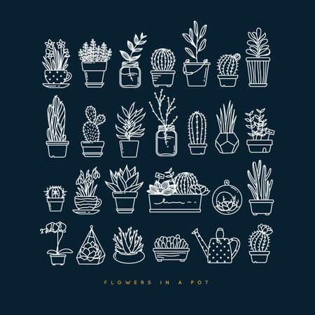 Icon flat set plants in pots drawing on dark blue background Illustration