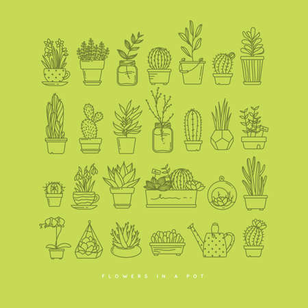 Flat icon set  of plants in pots drawing on light green background.