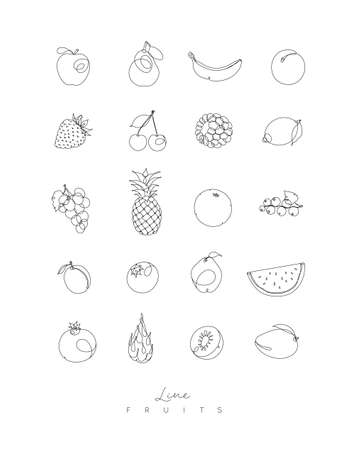 Fruits icons in pen hand drawing lines style on white background