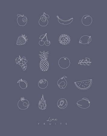 Fruits icons in pen hand drawing lines style on grey background