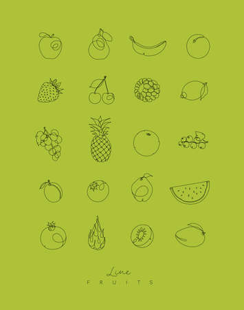 Fruits icons in pen hand drawing lines style on green background Ilustração