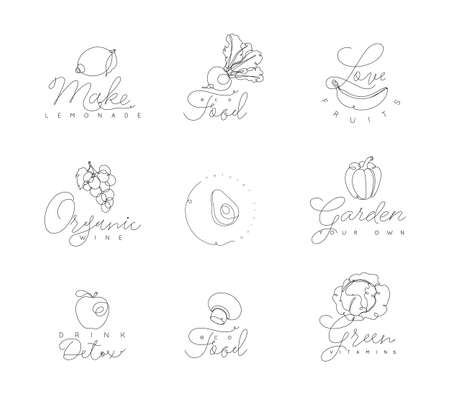 Fruits and vegetables symbols with lettering in pen hand drawing lines style on white background Ilustração