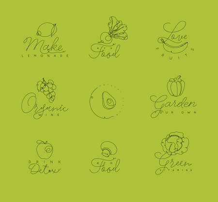 Fruits and vegetables symbols with lettering in pen hand drawing lines style on green background