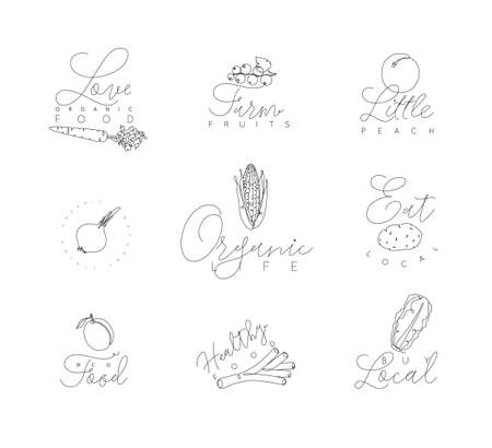 Vegetables and fruits symbols with lettering in pen hand drawing lines style on white background