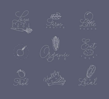 Vegetables and fruits symbols with lettering in pen hand drawing lines style on grey background