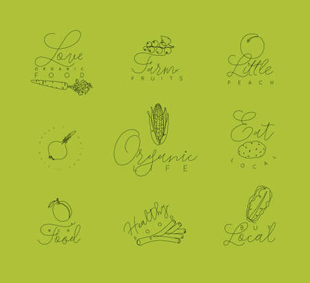 Vegetables and fruits symbols with lettering in pen hand drawing lines style on green background