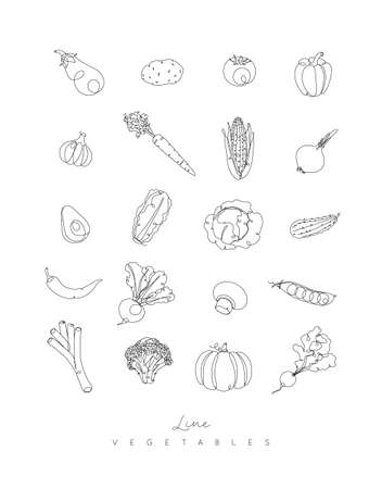 Vegetables icons in pen hand drawing lines style on white background
