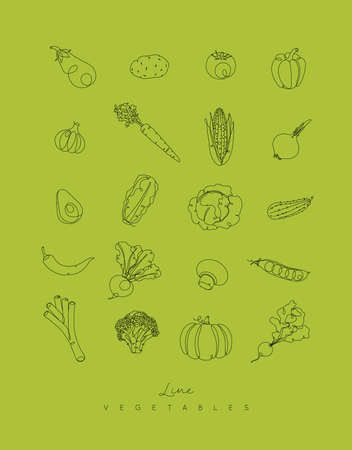 Vegetables icons in pen hand drawing lines style on green background