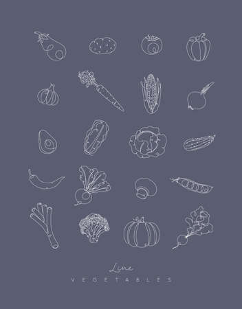 Vegetables icons in pen hand drawing lines style on grey background