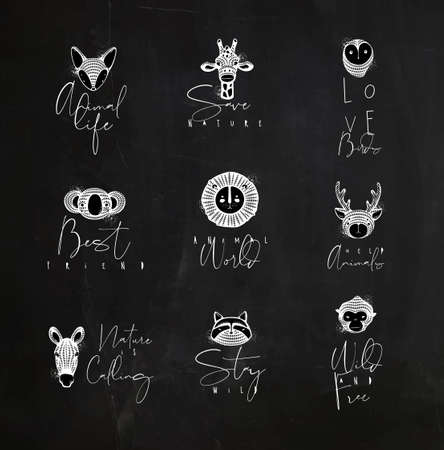 Set of animals authentic graphic signs fox, giraffe, owl, panda, lion, antelope, horse, cat, monkey with lettering drawing with chalk on chalkboard background