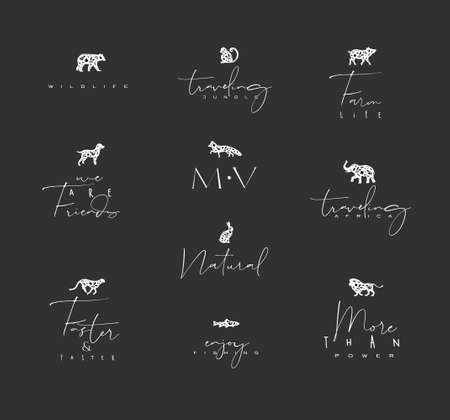 Set of animals mini floral graphic signs bear,  monkey, fox, pig, dograbbit, elephant, cheetah with lettering drawing on dark background