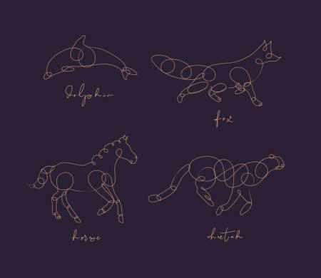 Set of animals dolphin, fox, horse, cheetah drawing in pen line style on dark background