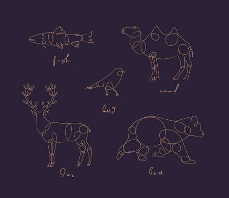 Set of animals fish, camel, bird, deerm bear drawing in pen line style on dark background Illustration