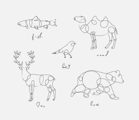 Set of animals fish, camel, bird, deerm bear drawing in pen line style on light background