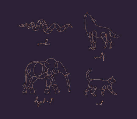 Set of animals snake, wolf, elephant, cat drawing in pen line style on dark