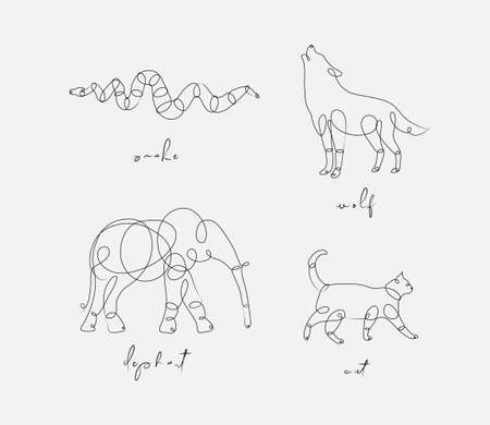 Set of animals snake, wolf, elephant, cat drawing in pen line style on light background