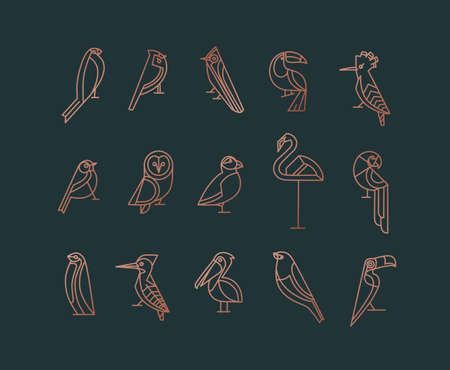Set of bird icons in vintage art deco flat graphic style drawing on green background