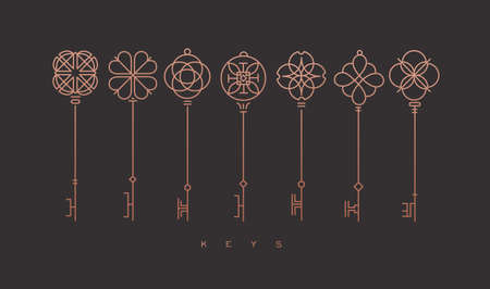 Set of key collection in modern line style drawing on bronze background. Illustration