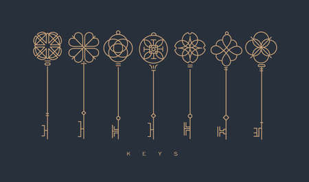 Set of key collection in modern line style drawing on gray background.