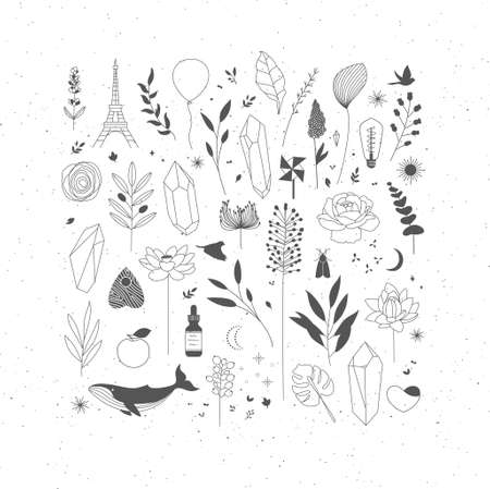 Set of different decorative elements with branches, flowers, animals and various objects.