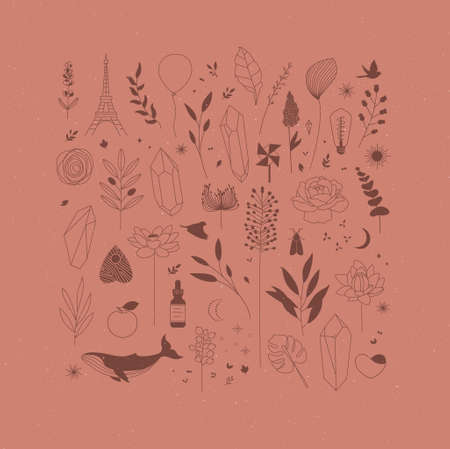 Set of different decorative elements with branches, flowers, animals and various objects drawing on coral background 일러스트
