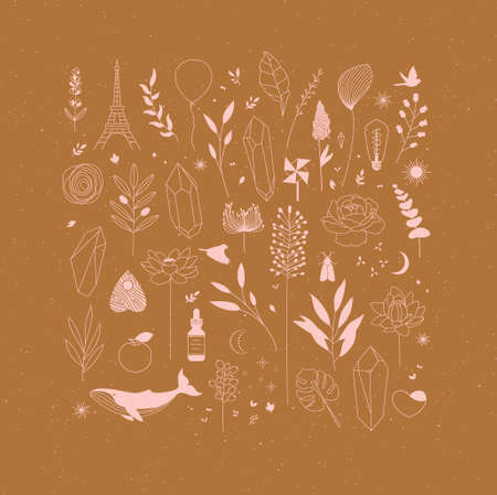 Set of different decorative elements with branches, flowers, animals and various objects drawing on mustard background