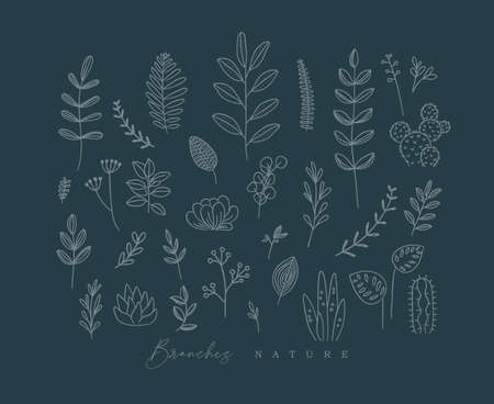 Set of different forms branch and leaves in minimalism style drawing on dark blue background