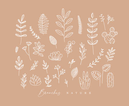 Set of different forms branch and leaves in minimalism style drawing on peach background Иллюстрация