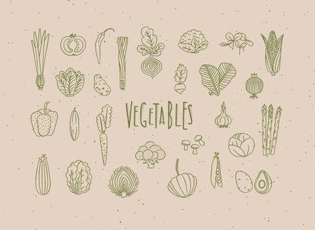Set of vegetable icons onion, tomato, lettuce, chili, pepper, beets, radish, corn, leek, cucumber, carrot, garlic, asparagus, mushrooms, eggplant, lettuce artichoke broccoli pumpkin peas avocado drawing in handmade line style on beige background Иллюстрация