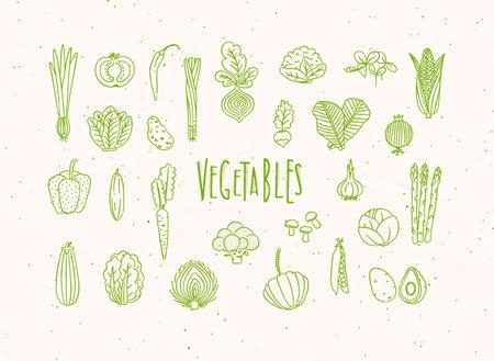 Set of vegetable icons onion, tomato, lettuce, chili, pepper, beets, radish, corn, leek, cucumber, carrot, garlic, asparagus, mushrooms, eggplant, lettuce artichoke broccoli pumpkin peas avocado drawing in handmade line style with green color Иллюстрация