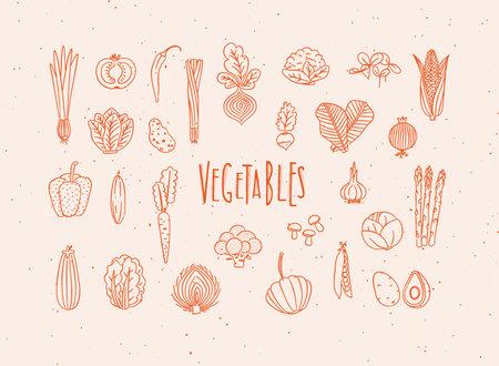 Set of vegetable icons onion, tomato, lettuce, chili, pepper, beets, radish, corn, leek, cucumber, carrot, garlic, asparagus, mushrooms, eggplant, lettuce artichoke broccoli pumpkin peas avocado drawing in handmade line style with red color