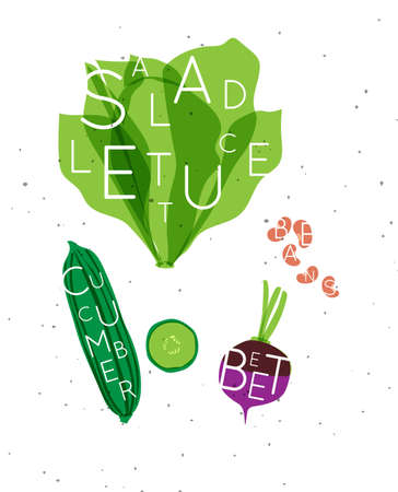 Set of color vegetables with inscription salad letuce, cucumber, beet, beans drawing in minimalist style 矢量图像