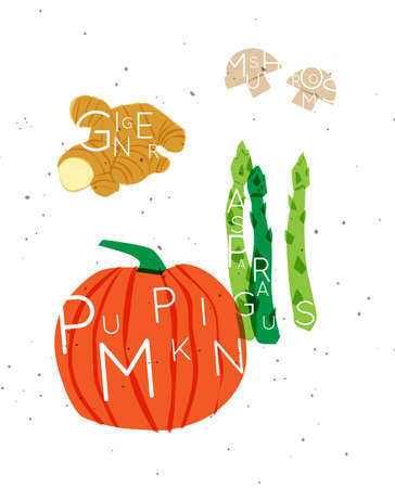 Set of color vegetables with inscription ginger, mushrooms, asparagus, pumpkin drawing in minimalist style 矢量图像