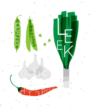 Set of color vegetables with inscription peas, leek, garlic, hot pepper drawing in minimalist style