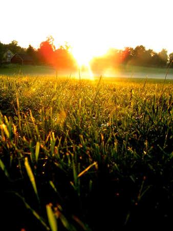 coucher de soleil sur le feild Banque d'images