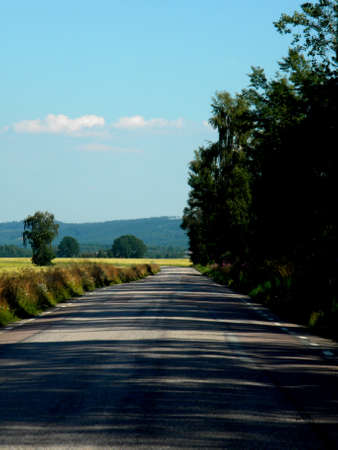 shaded road on the countryside photo