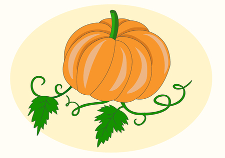 stocky: pumpkin with green leaves