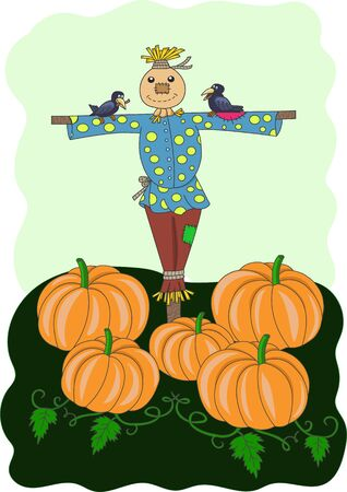 scarecrow and pumpkins Illustration