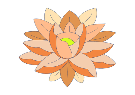 Orange water lily for design