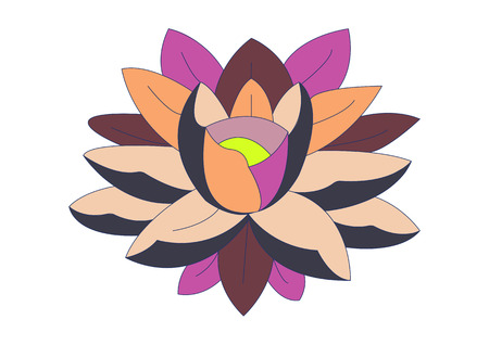 varicolored water lily for design