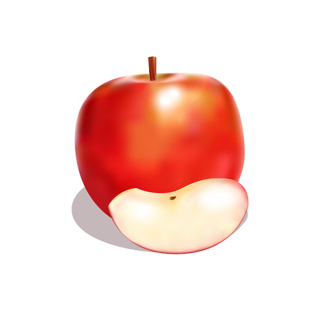 attractive red apple with shadow Illustration